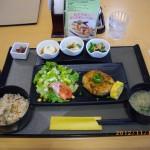 マンナンライスの炊き込みご飯と豆腐ハンバーグセット[ 帝京大学医学部付属病院レストラン グリーンズカフェ]