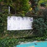 ワイン入門講座【番外講座】お花見会3月31日(日)