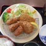 牡蠣フライとひれかつ ランチ御飯セット