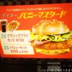 ダイナーハニーマスタード クラッシクフライセット790円